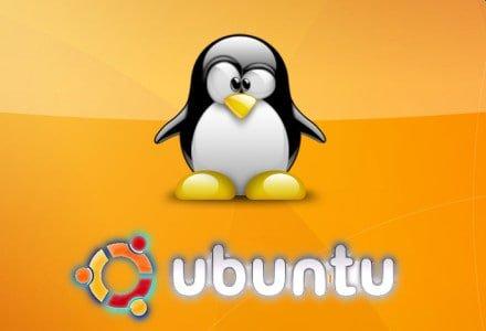 ubuntu penguin and symbol