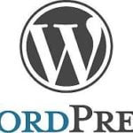 WordPress for Business Websites: Important Tips, Pros & Cons
