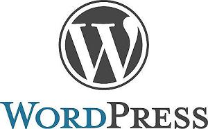 WordPress for Business Websites: Important Tips, Pros & Cons 1