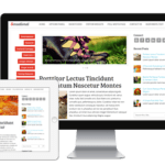 MyThemeShop Mobile Friendly WordPress Themes Review(Discount coupon)