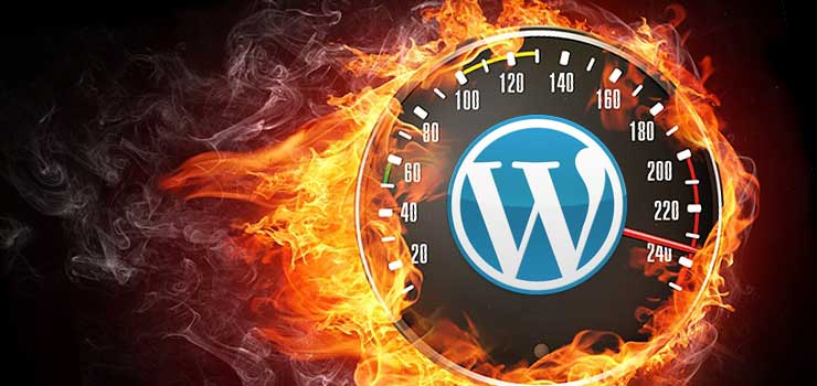 wordpress site optimization : Page Load Speed