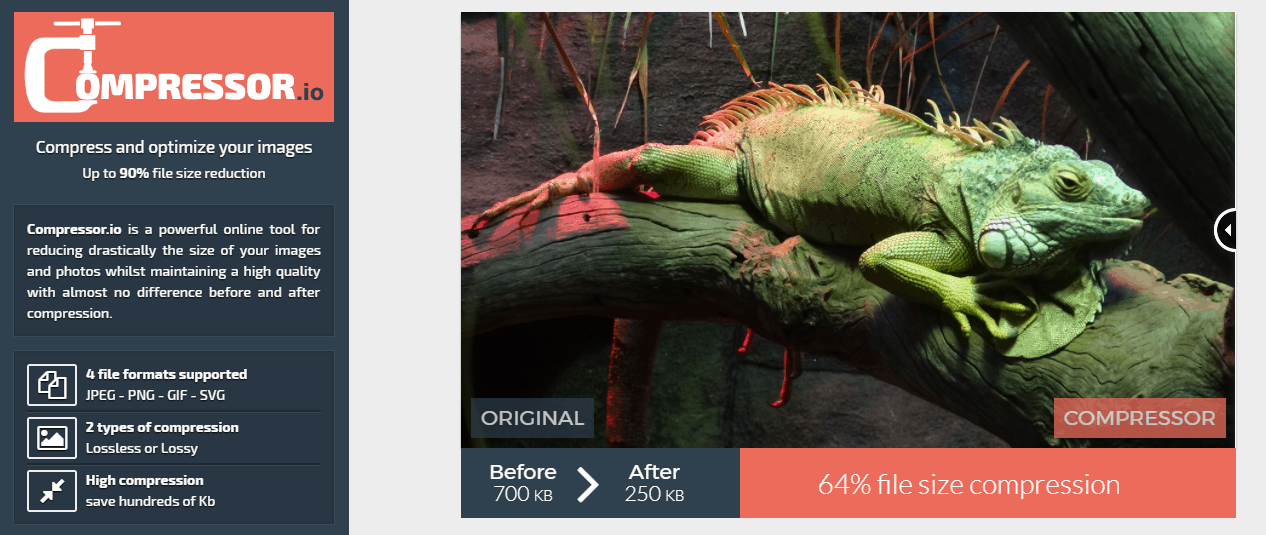 Top 5 Best Image Optimizers - High Quality Images at Reduced File Size 1