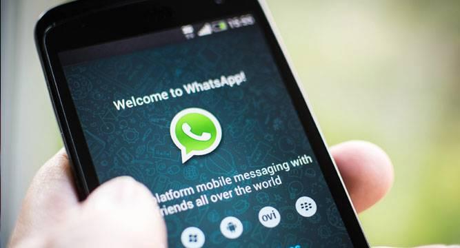 whatsapp video update