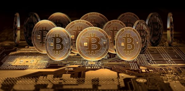 Fantastic Tips on Bitcoin wallets for Beginners to Guide them the Right way 1