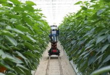 internet of things smart farming