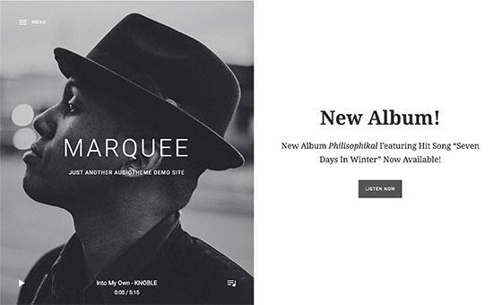 Website/marquee.jpg