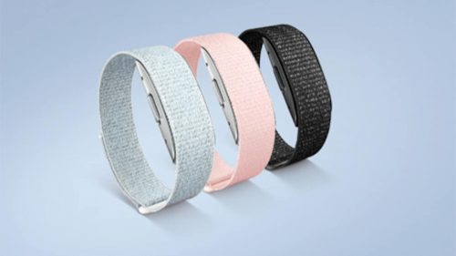 Amazon Halo Band-Price, Features, And All That You Need To Know! 1